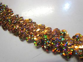 Holographic- Stretch Sequin Trim- 2 Row- Gold