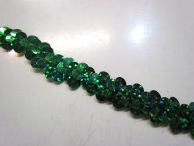 Holographic- Stretch Sequin Trim- 1 Row- Green