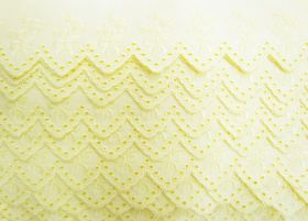 55mm Delightful Bouquet Broderie Anglaise Trim- Sunny Yellow #246