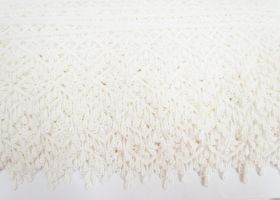 45mm Willow Edge Lace Trim #303