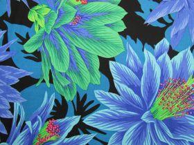 Philip Jacobs Cactus Flower- Cool