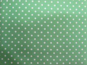 Palette Pleasures Basics- White Spot on Green- Magic Mint #3707