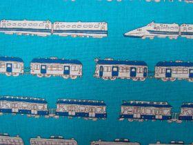 Kokka Trains- Aqua