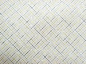 Geometry #95-15