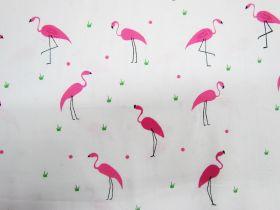 Flamingo Pop Cotton #PW1101