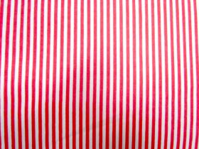 A Day In The Country- Stripe 13- Coral