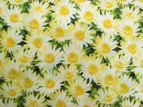 Dreamy Daisies Cotton- Yellow #PW1058