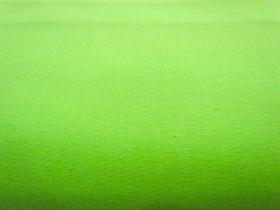 Quilter's Cotton- Pistachio Green #H043522
