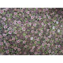 Japanese Floral Leaf #8172