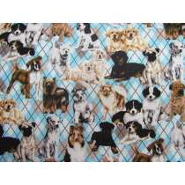Argyle Doggies Cotton #4793