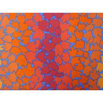 Kaffe Fassett Ombre Leaves- Orange