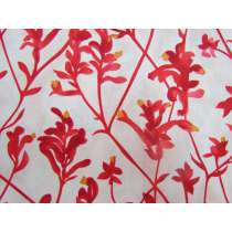 Kangaroo Paw Cotton- Red