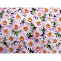 Dreamy Daisies Cotton- Pink #PW1105