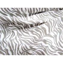 Zebra Bengaline- Grey