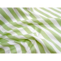 Striped Cotton Poplin- Pistachio