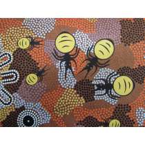 Honey Ants Cotton- Brown