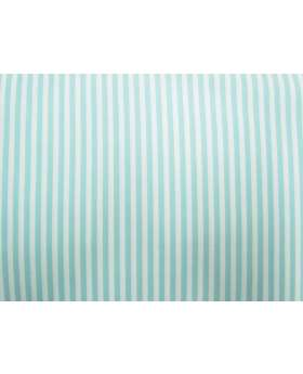 A Day In The Country- Tone on Tone Stripe- Duck Egg Blue