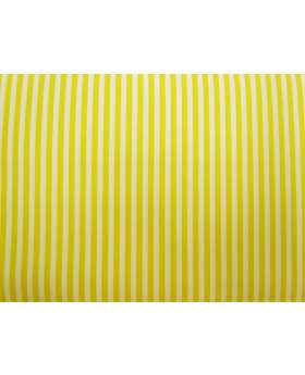A Day In The Country- Tone on Tone Stripe- Gold