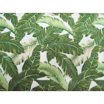 Paradise Palms Cotton