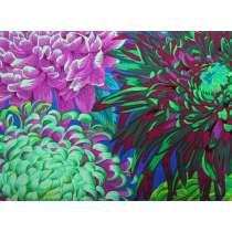 Philip Jacobs- Japanese Chrysanthemum- Green