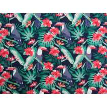 Tropical Toucan Cotton- Navy #2897